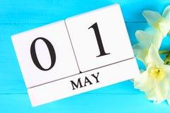 Calendario de madera blanco con el texto: 1 de mayo Flores blancas de narcisos en una tabla de madera azul Día del Trabajo y prim Foto de archivo