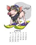 Calendario del año con el cerdo Ejemplos mensuales El cochinillo dibujado mano lleva el equipo del esquí, sombrero, bufanda, gafa imágenes de archivo libres de regalías