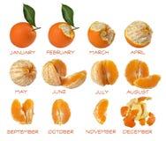 Calendario 2017年delle arance 免版税图库摄影