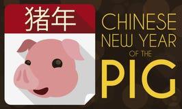 Calendario a fogli mobili con il fronte del maiale per il nuovo anno cinese, illustrazione di vettore royalty illustrazione gratis