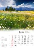Calendario 2014. Junio. Imagen de archivo libre de regalías