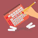 Calendario mestruale con i tamponi ed i cuscinetti Ciclo di mestruazione Igiene e protezione Fotografia Stock