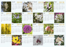 Calendario para 2018 Fotos de archivo