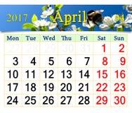 Calendario para abril de 2017 con la abeja en la flor del ciruelo Fotografía de archivo libre de regalías