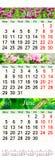 Calendario para abril-junio de 2017 con imágenes Foto de archivo libre de regalías