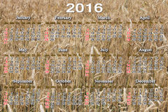 Calendario para 2015 en el campo del fondo del trigo Foto de archivo