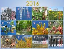 Calendario para 2016 en inglés con la foto para cada mes Foto de archivo