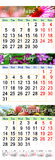 Calendario para junio julio y agosto de 2017 con imágenes coloreadas Foto de archivo libre de regalías