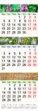 Calendario para junio julio y agosto de 2017 con las imágenes coloreadas Imagen de archivo