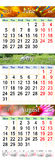 Calendario para junio julio y agosto de 2017 con las imágenes coloreadas Fotografía de archivo