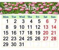 Calendario para mayo de 2017 con la flor de los tulipanes de la lila Fotos de archivo