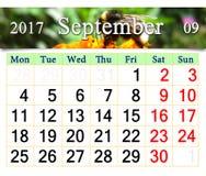 Calendario para septiembre de 2017 con el abejorro en la maravilla Imágenes de archivo libres de regalías