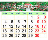 Calendario para septiembre de 2017 con el cep de la seta Imagenes de archivo