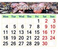 Calendario para septiembre de 2017 con las setas del Suillus Imagenes de archivo