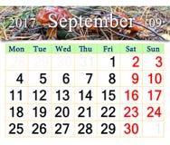 Calendario para septiembre de 2016 con las setas del Suillus Fotografía de archivo