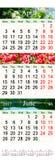 Calendario per aprile-giugno 2017 con le immagini Fotografia Stock