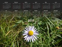 Calendario per 2020 fotografia stock