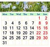 Calendario per il luglio 2017 con i fiori del Cichorium Fotografia Stock