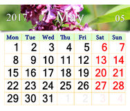 Calendario per il maggio 2017 con i fiori del lillà Immagine Stock