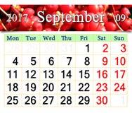 Calendario per l'ottobre 2017 con il ramo dello schisandra Fotografia Stock Libera da Diritti