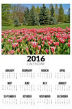Calendario per 2016 Paesaggio della sorgente Immagini Stock