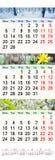 Calendario per tre mesi di 2017 con le immagini della natura Immagine Stock Libera da Diritti