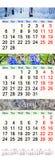 Calendario per tre mesi di 2017 con le immagini della natura Fotografie Stock Libere da Diritti