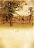 Calendario retro. Luglio. Paesaggio d'annata di estate. Fotografia Stock