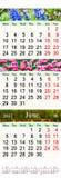 Calendario triple para April May y junio de 2017 con las imágenes Fotografía de archivo