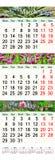 Calendario triple para marzo abril y mayo de 2017 con las imágenes de flores Imágenes de archivo libres de regalías