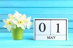 Calendrier en bois blanc avec le texte : 1er mai Fleurs blanches des jonquilles sur une table en bois bleue Fête du travail et re Image stock