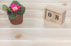 Calendrier en bois du 8 mars, à côté des pots de fleur sur la table en bois Image stock