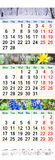 Calendrier pendant février mars et avril 2017 avec les photos colorées de la nature Image libre de droits