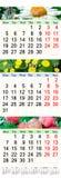 Calendrier pendant juin juillet et août 2017 avec des images colorées Images stock