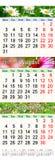 Calendrier pendant juin juillet et août 2017 avec des images colorées Image stock
