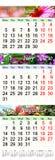 Calendrier pendant juin juillet et août 2017 avec des images colorées Photo libre de droits