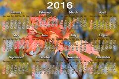 Calendrier pour 2016 avec des feuilles d'érable rouge Photographie stock