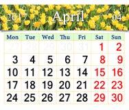Calendrier pour avril 2017 avec les tulipes jaunes Photo stock