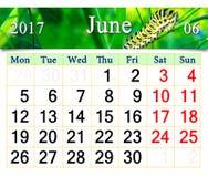 Calendrier pour juin 2017 avec la chenille Photo stock