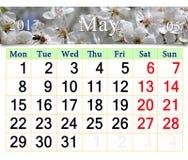 Calendrier pour mai 2017 avec le cerisier de floraison Photographie stock libre de droits