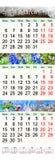 Calendrier triple pendant mars avril et mai 2017 avec des photos Photos stock