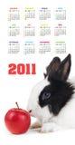 Calendrier vertical de couleur pendant 2011 années Images stock