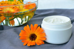Calendula cosmetic cream and flowers Royalty Free Stock Images