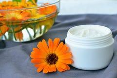 Calendula cosmetic cream and flowers. Jar of moisturizing face cream and fresh marigold flower. Calendula cosmetic cream royalty free stock images