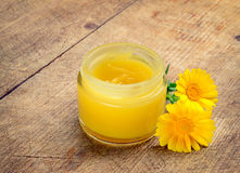 Calendula cream Royalty Free Stock Images