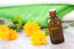 Calendula essential aroma oil Royalty Free Stock Photos