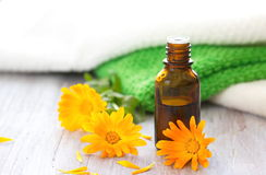 Calendula essential aroma oil Royalty Free Stock Photography
