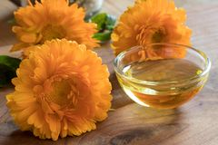 Calendula essential oil in a glass bowl with calendula flowers Royalty Free Stock Photo