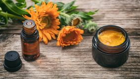 Calendula essential oil and ointment on a wooden table, fresh blooming calendula background,. Calendula products. Essential oil and ointment on a wooden table Stock Photography