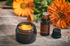 Calendula essential oil and ointment on a wooden table, fresh blooming calendula background,. Calendula products. Essential oil and ointment on a wooden table Royalty Free Stock Photo